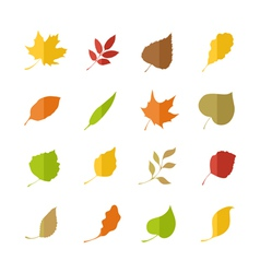 Set of leaves pictograms vector image