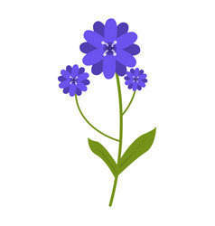 wildflowers flower flat icon plant isolated on vector image