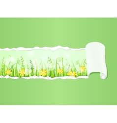 Beautiful green meadow under Ripped Paper vector image vector image