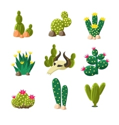 Cactus and Skull Icons Set vector