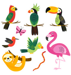 set isolated with tropical animals vector image