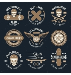 Skateboarding Emblems In Color vector image