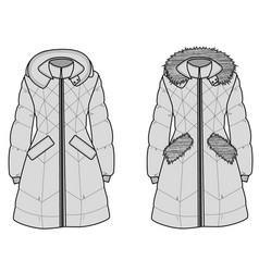 The sketch womens snow jacket with hood vector