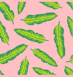 Colourful tropical background design vector