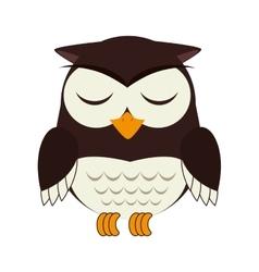 owl bird animal design vector image