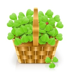 basket with clover vector image