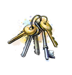 bunch keys from a splash watercolor hand vector image