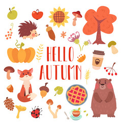 Hello autumn cute animals and attribute set vector