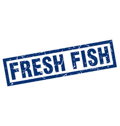 square grunge blue fresh fish stamp vector image