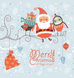 Santa Claus and owls vector image vector image