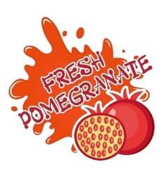 Fresh pomegranate splash icon logo sticker vector image vector image