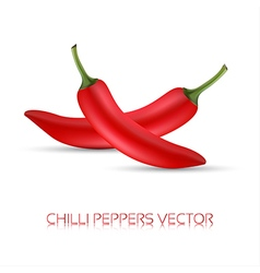 Whole red chili peppers vector image