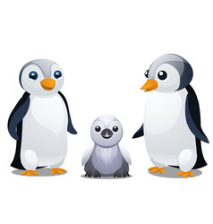 a set fun animated penguins isolated on white vector image