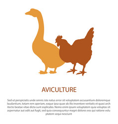 Agriculture poster with silhouette of hen goose vector