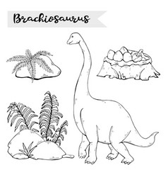 brachiosaurus with plant and stone isolated vector image