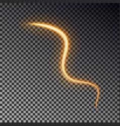 glowing light line isolated on dark background ab vector image