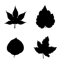 Icon set of Leaves vector image