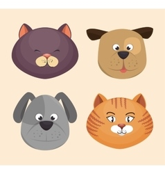 kitten and puppy faces icons design vector image