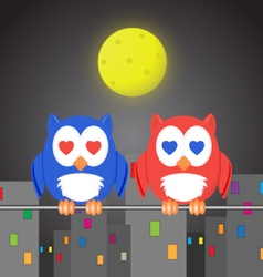 Owlet two lovers in the night city vector