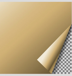 page curl with transparent corner bronze foil vector image