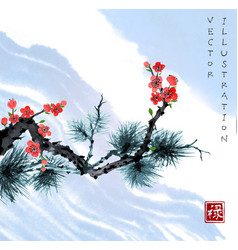 Sakura blossom and pine tree branch in blue sky vector