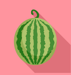 whole watermelon icon flat style vector image