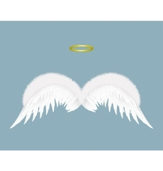 Angel wings and halo isolated on background vector image