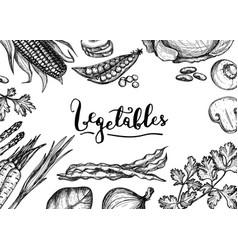healthy vegan food hand drawn background vector image vector image