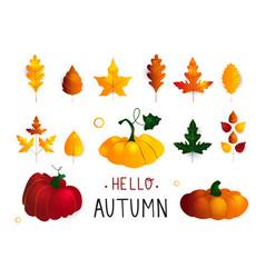 Colorful seasonal fall elements hand drawn vector