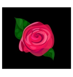 Contrast rose background vector image
