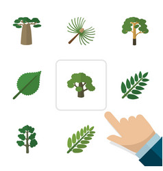 Flat icon ecology set of leaves linden rosemary vector