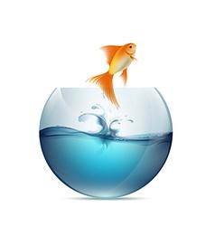 goldfish jumping from aquarium vector image