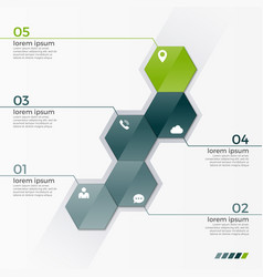 Infographic template with 5 hexagons vector