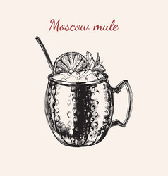 Moscow mule hand drawn drink vector