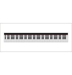 Piano keyboard 88 keys isolated vector image