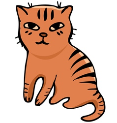 Tabby cat vector image