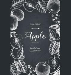 vintage card design with apple fruits sketch vector image