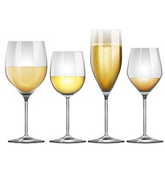 White wine in tall glasses vector image vector image