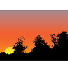 Bright sunrise vector image vector image