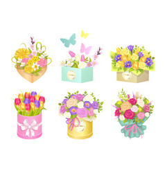 Boxes bouquets and butterflies vector