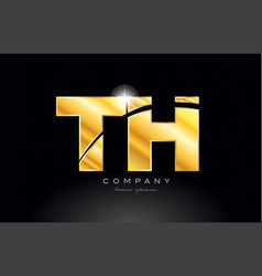 Combination letter th t h gold golden alphabet vector