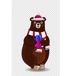 cute cartoon bear in santa hat and scarf holding vector image