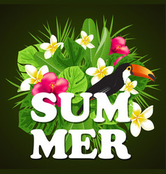 decorative summer background vector image