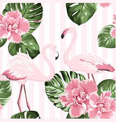 exotic pink flamingo birds couple bright camelia vector image