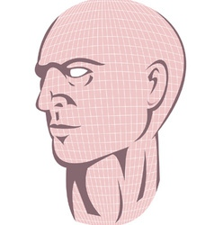 Male Human Head With Grid vector