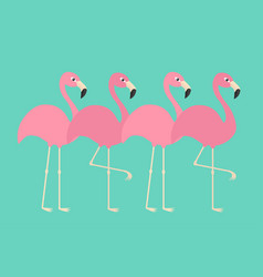 pink flamingo set line exotic tropical bird zoo vector image