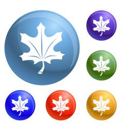 autumn leaf icons set vector image