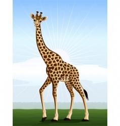 bigeyed giraffe vector image