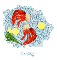 Meat crab with rosemary and lemon on ice cubes vector