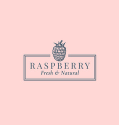 raspberry abstract sign symbol or logo vector image